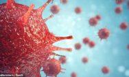 تم اكتشاف ما يناهز عن 200 ألف من الفيروسات المجهولة والمختبئة في أعماق محيطات العالم