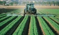 5 مخاطر صحية للفواكه والخضروات غير العضوية