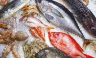 """قائمة بأكثر """"الأسماك الملوثة 9 """" التي يجب الامتناع عن تناولها"""