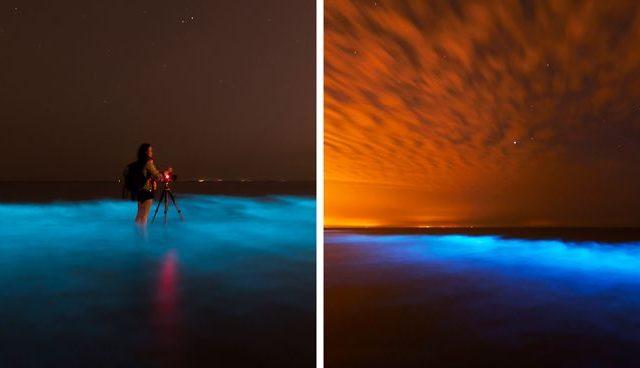 """ظاهرة """"التألق البحري"""" النادرة على الساحل الهولندي (بالصور)"""