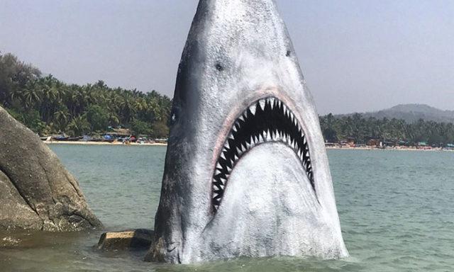 بالصور: فنان أمريكي يحول حجر شاطئ بالهند إلى سمكة قرش بيضاء عظيمة جذبت العديد من الناس لالتقاط الصور!