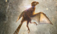 اكتشف العلماء للتو ديناصورا عمره 163 مليون عام تعرف عليه الان !!