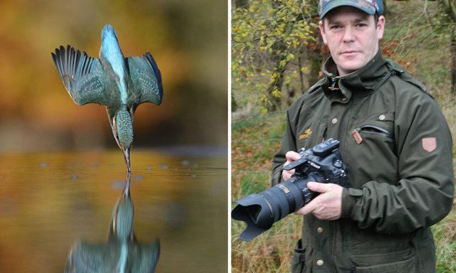 بعد 6 سنوات و 720000 محاولة تصوير، أخيرًا يأخذ المصور لقطة رائعة لطائر الرفراف