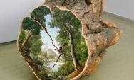 تناقض فنانة ترسم مناظر طبيعية خلابة على جدوع الأشجار المهترئة