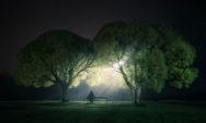 صور ليلية للطبيعة الساحرة .. لمحبي التجول بالليل