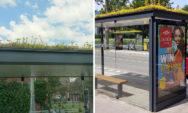 لن تستطيع توقع المشروع الهولندي الجديد الذي يخص محطات النقل والنحل !!