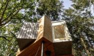 """بيت الشجرة (المظلة): فندق سياحي ووجهة طبيعية في """"الدنمارك"""""""