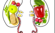 أغذية صحية للحافظ على سلامة الكليتين ..