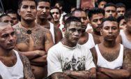 أكبر 7 عصابات إجرامية وأكثرها شهرة في العالم