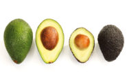 الفوائد الصحية لأكل الأفوكادو بانتظام