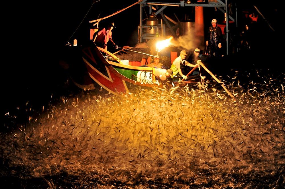 الصيد بنار الكبريت في تايوان