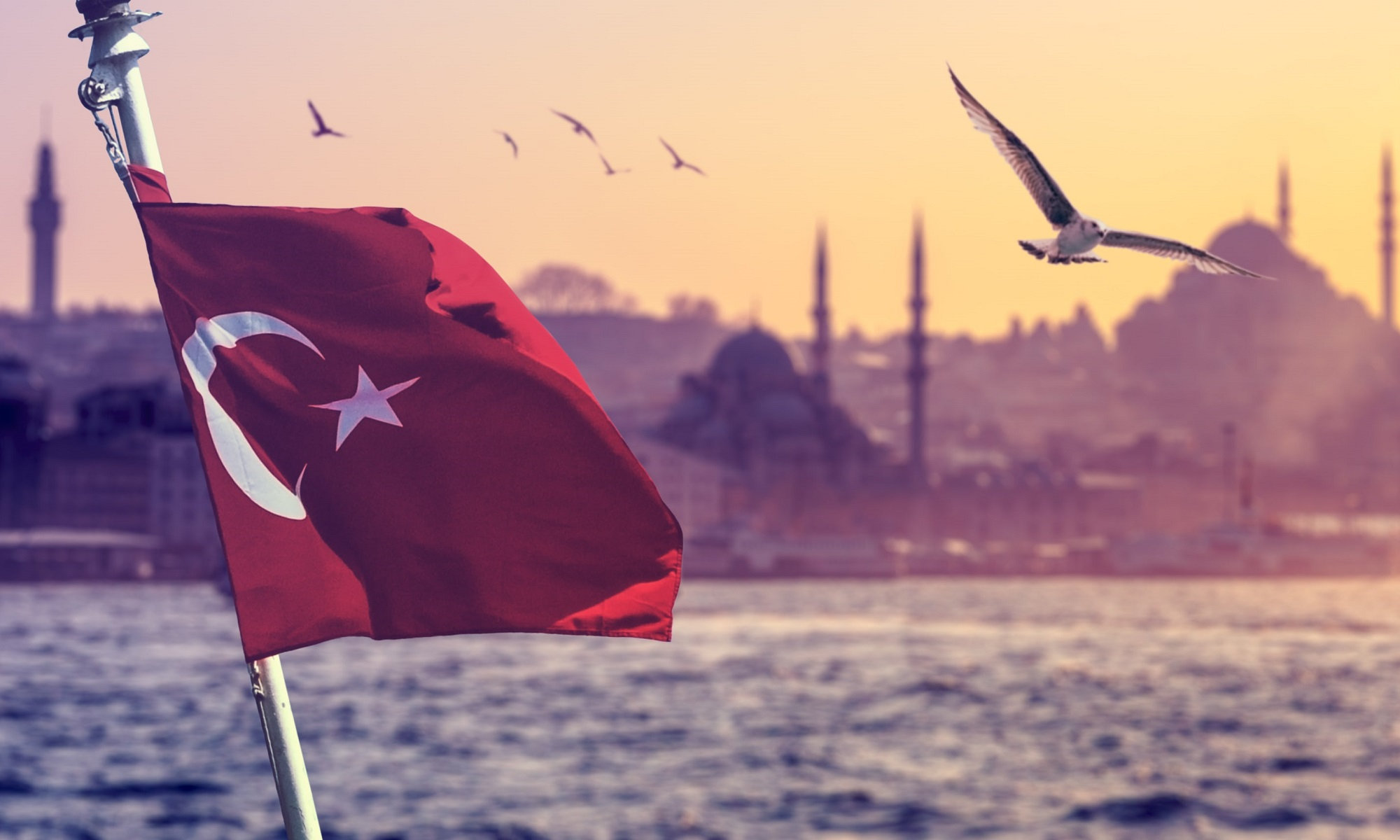 الهجرة الى تركيا 2020