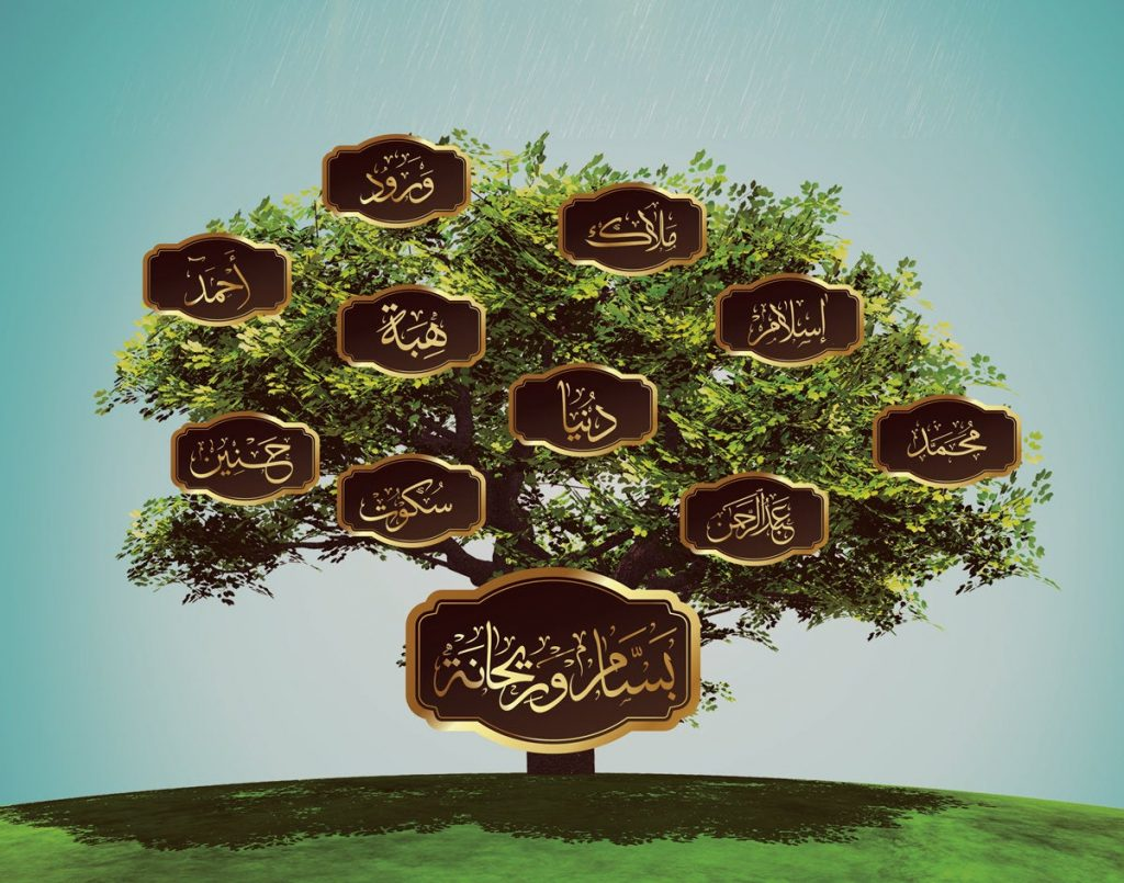 دار المحفوظات المصرية شجرة العائلة بالرقم القومى