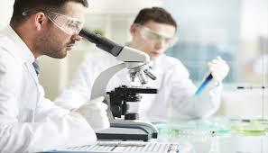 اسعار مختبرات الفا الطبية hgfv