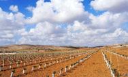 ما هي اساليب تنميه الموارد المائيه في البيئه الصحراويه بالعالم العربي؟