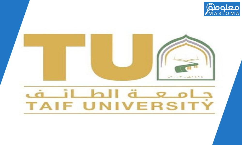 جامعة طيبة عن بعد بلاك بورد