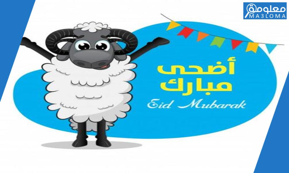 صور خروف العيد Sheep Png رمزيات عيد الاضحى 2020