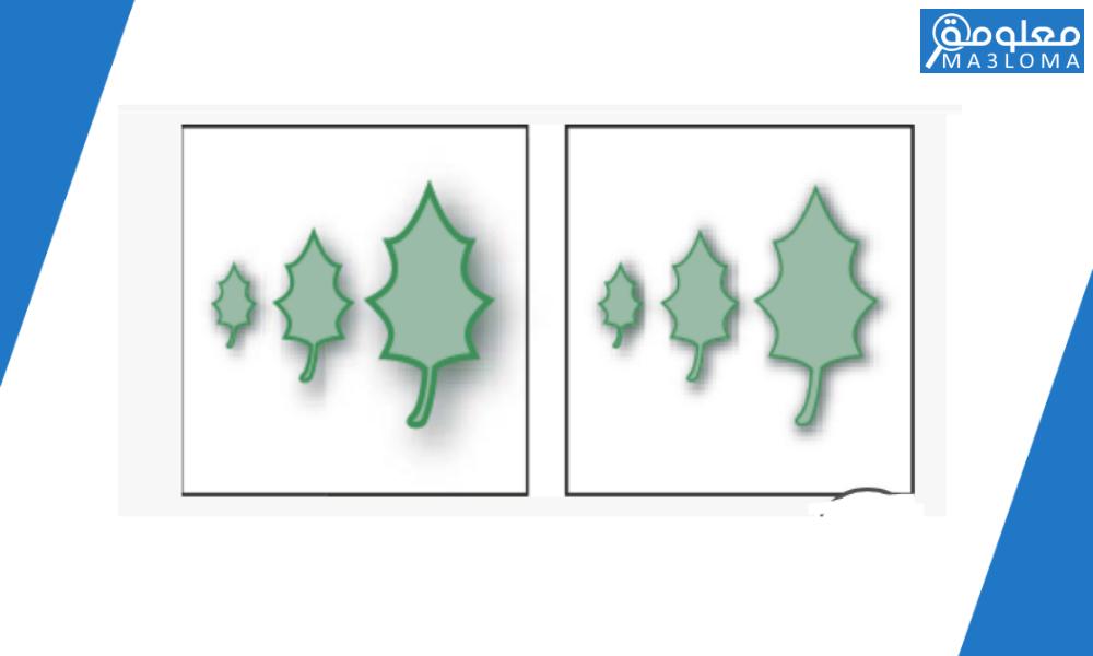 تغير الحجم بقيمه سالبه يؤدي الى تصغير حجم الكائن .. صحيح ام خطأ