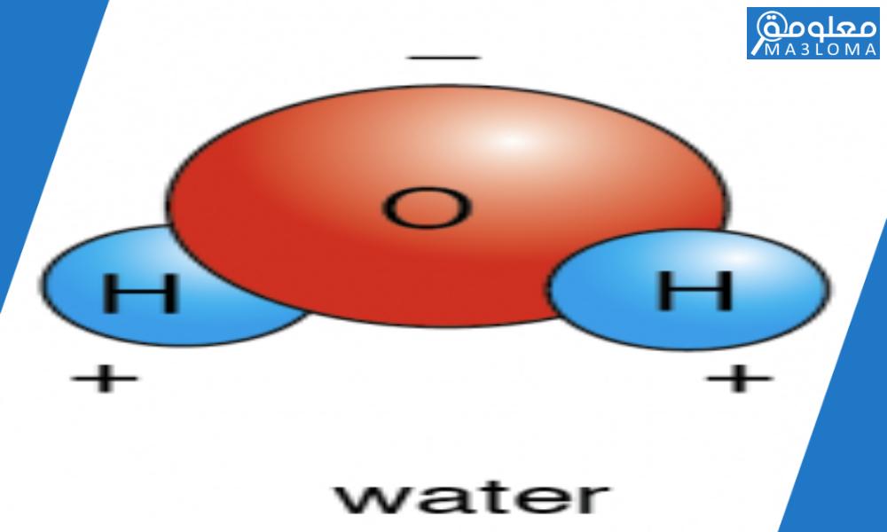 الروابط القطبية تتشارك بالإلكترونات بالتساوي … صح أم خطأ