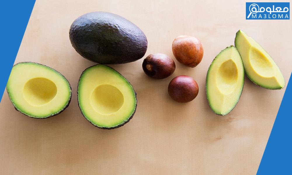 كيف تنتشر بذور ثمار الأفوكادو ؟ .. طرق انتشار بذور النباتات
