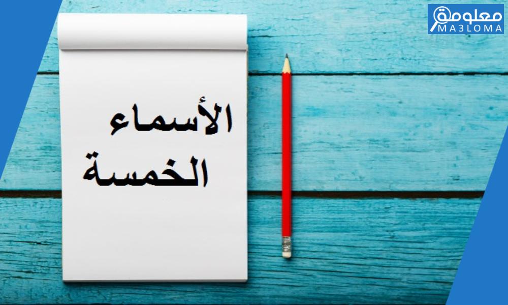تفاهم مع حميك بلطف استخرج اسم من الأسماء الخمسة في الجملة..