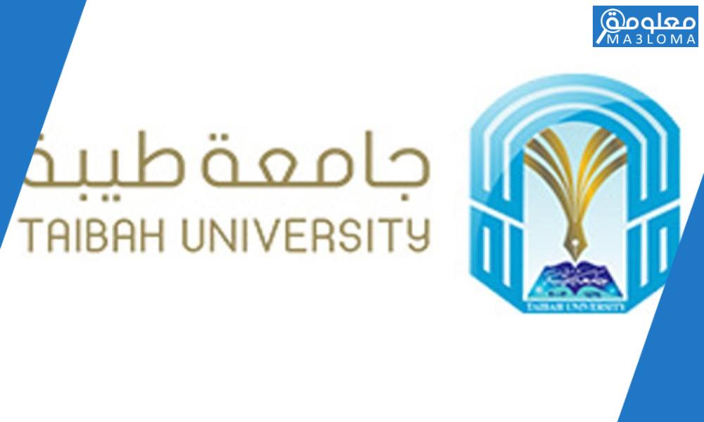 جامعة طيبة بوابة الطالب الالكترونية 1442 رابط جامعة طيبة