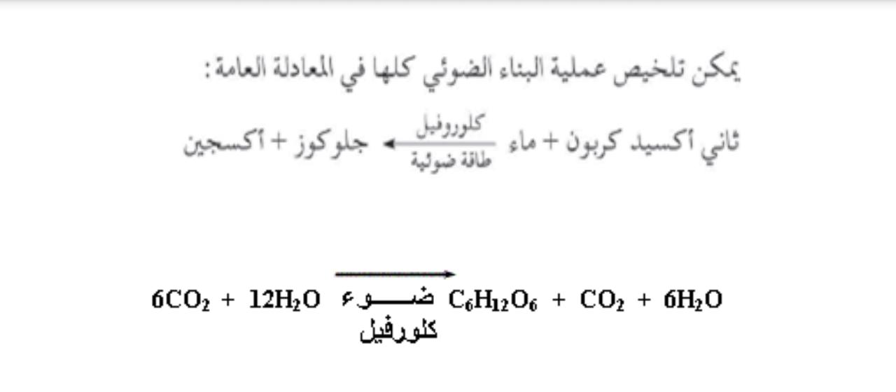 السكر يعد من المواد الناتجه في معادلة البناء الضوئي صح ام خطأ ..