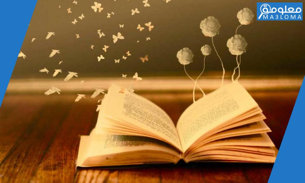 كيف تنمي مهارة القراءة الواعية لديك .. طرق فعالة