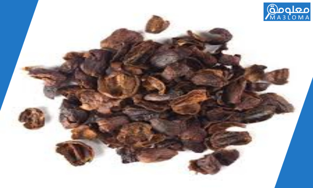 فوائد قشر القهوه للنفاس القيصري .. طريقة قهوة القشر للنفاس