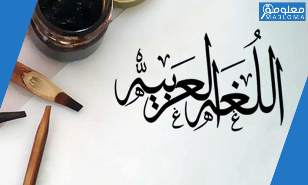 اللغة العربية لغة القرآن ابداع وبيان .. خصائص اللغة العربية