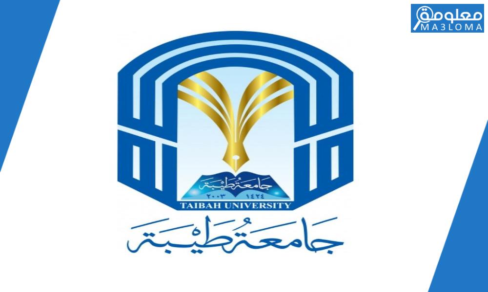 جامعة طيبة خدمة تك … كيفية معرفة البريد الجامعي جامعة طيبة