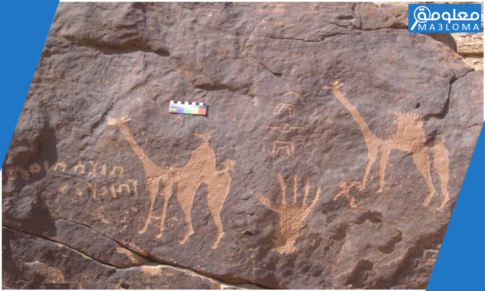 رموز القبائل كاملة السعودية .. ما معنى ارقام القبايل