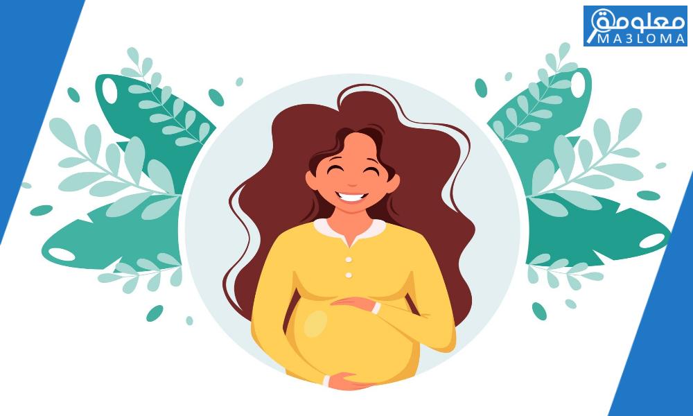 كيفية حساب موعد ولادتي بالهجري والميلادي