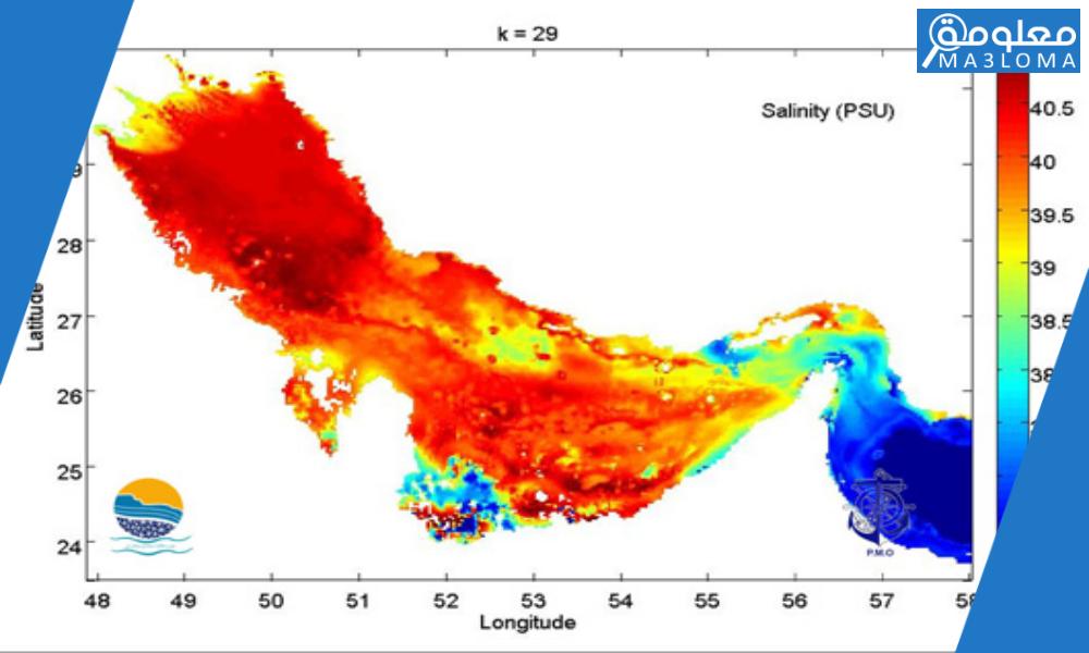 تُعد الملوحة في مياه الخليج العربي مرتفعة إجمالًا بسبب … اجابة كاملة